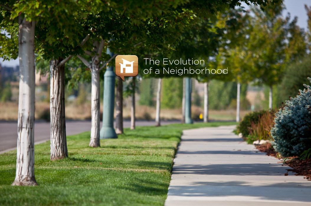 Growing Up Evolution of a Neighborhood