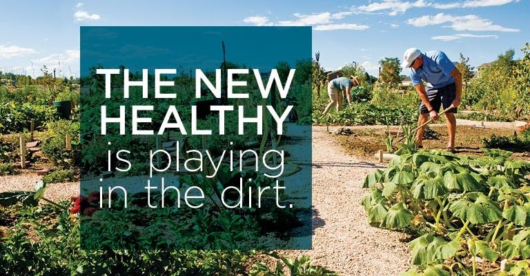 The new Healthy is playing in the dirt