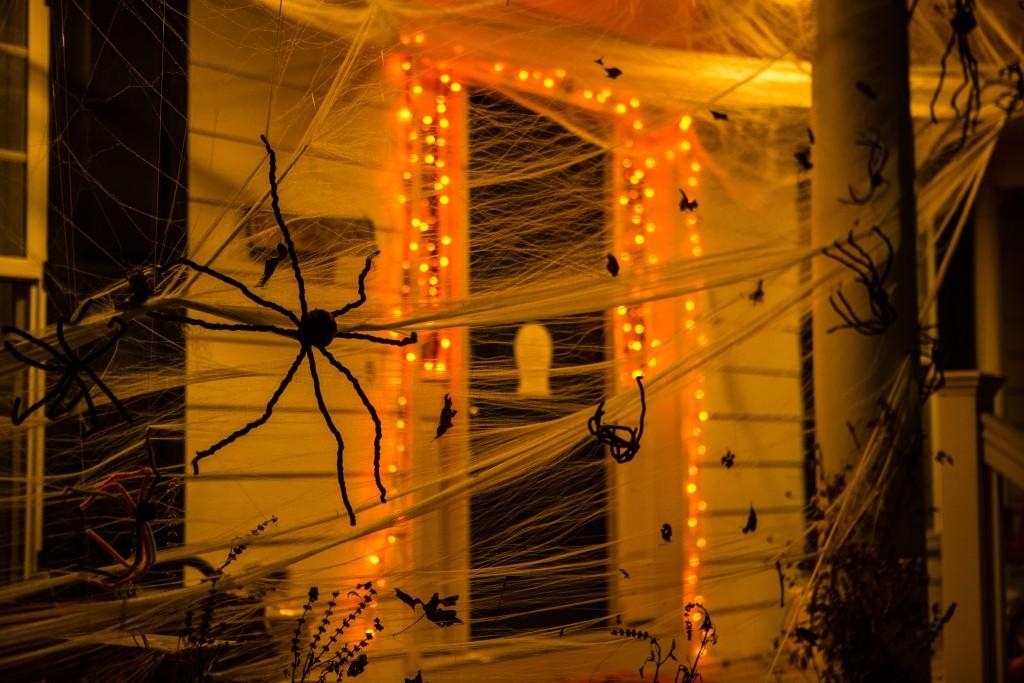 Uniquely Stapleton Halloween