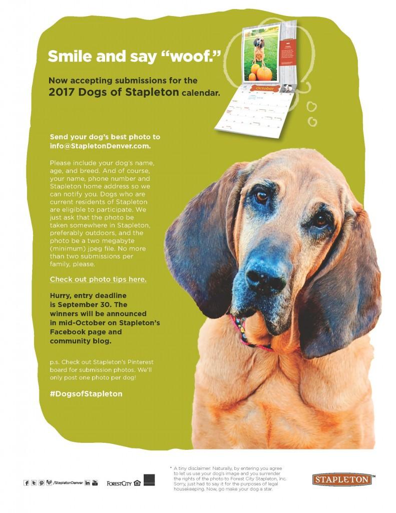 Dogs of Stapleton calendar contest