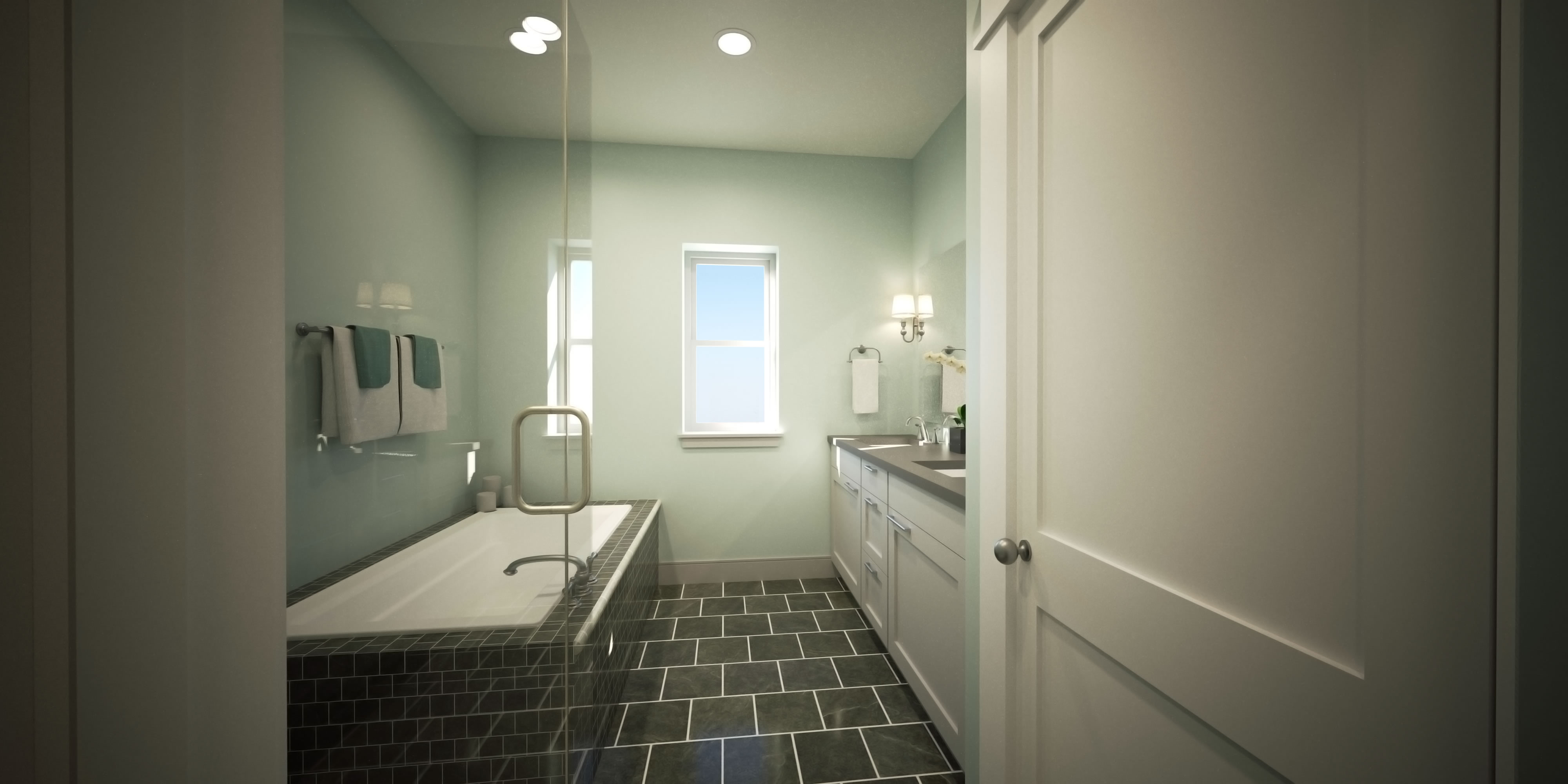 Thrive Vita Collection Bathroom New Homes in Denver