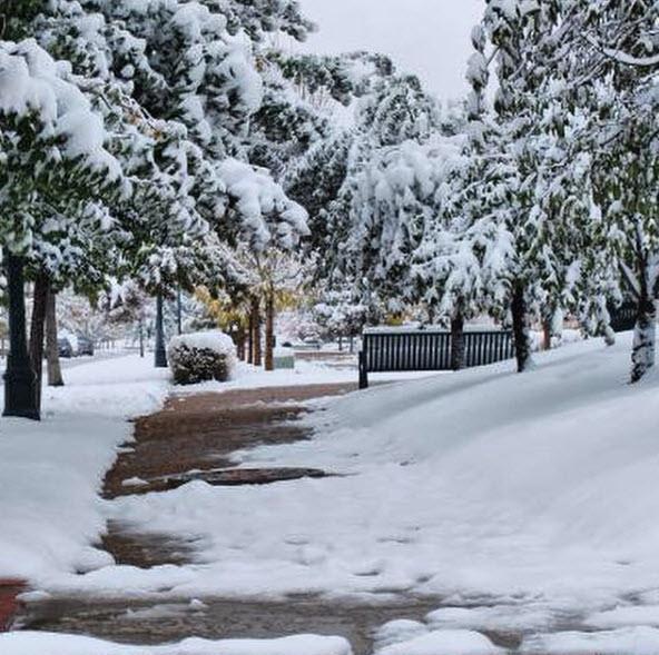 winter-image-3