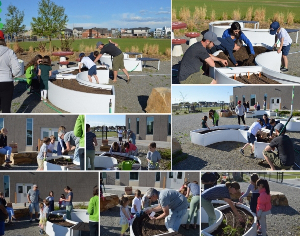 The Kitchen Community Learning Garden
