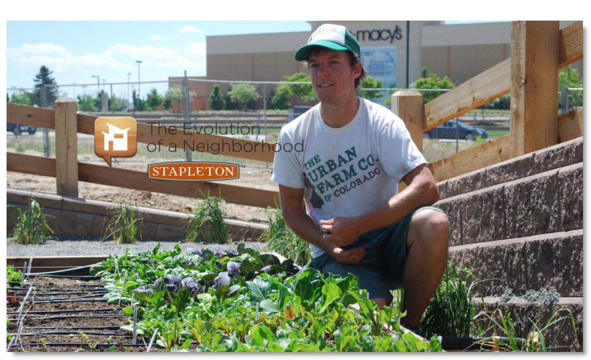 Bryant Mason Chief Gardening Officer