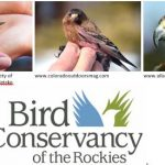 The Lowry Speaker Series Presents: An Evening with Bird Conservancy of the Rockies