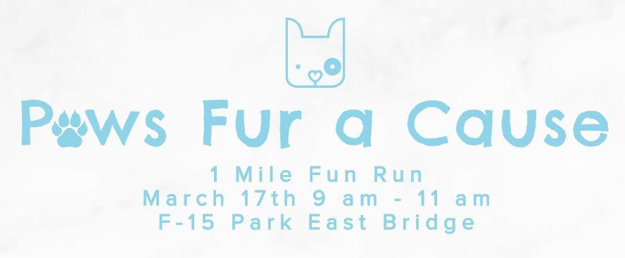 Paws Fur a Cause Fun Run in Denver, CO