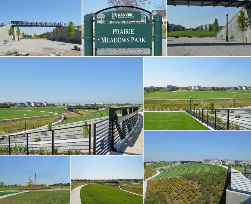 The Wonderful World of Prairie Meadow Park