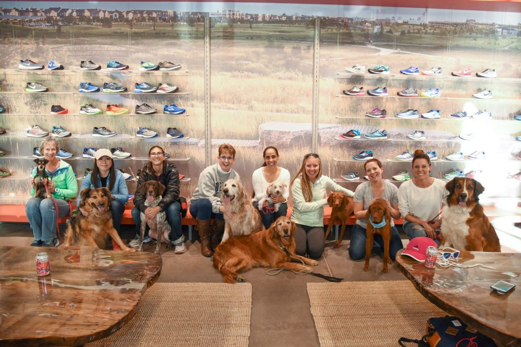 Runners Roost Furry Friends Photo Shoot In Quebec Square in Denver, CO