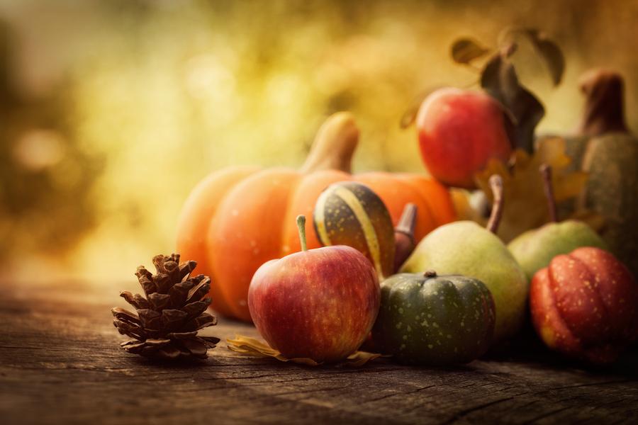 bigstock Autumn Fruit 50512217